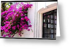 Purple Flowers On White Florida Home Greeting Card