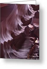 Purple Folds Greeting Card