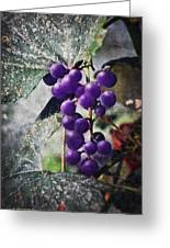 Purple Grapes - Oil Effect Greeting Card