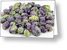 Purple Green Brussels Sprouts Greeting Card