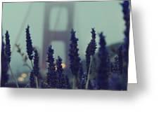 Purple Haze Daze Greeting Card