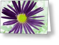 Purple Haze - Photopower 2858 Greeting Card
