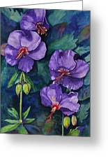 Purple Hibiscus Greeting Card
