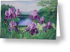 Purple Irises At Catfish Corner Greeting Card