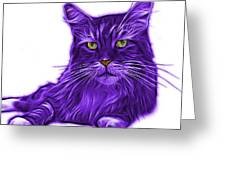 Purple Maine Coon Cat - 3926 - Wb Greeting Card