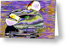 Purple Mallard Greeting Card