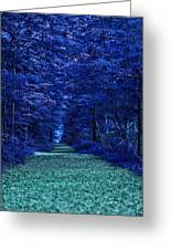 Purple Nature Greeting Card