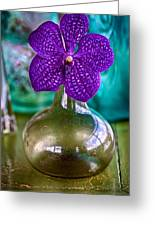 Purple Orchid In Vase Greeting Card