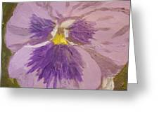 Purple Pansy 1 Greeting Card