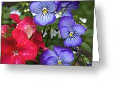 Purple Pansy Flowers By Line Gagne Greeting Card