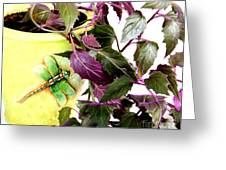 Purple Passion And Dragonfly Pot Greeting Card