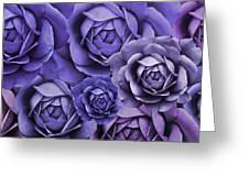 Purple Passion Rose Flower Abstract Greeting Card
