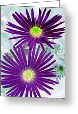 Purple Passion - Photopower 1604 Greeting Card
