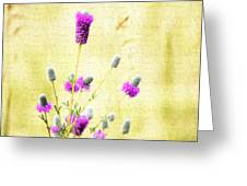 Purple Passion Texture Greeting Card