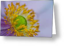 Purple Pastel Daisy Greeting Card