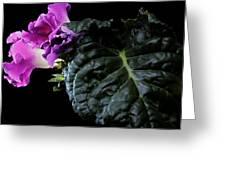 Purple Plant Greeting Card