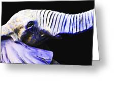 Purple Rein - Vibrant Elephant Head Shot Art Greeting Card by Sharon Cummings