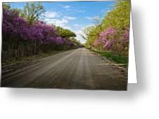Purple Road Greeting Card