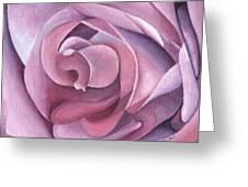 Purple Rose 14-1 Greeting Card