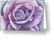Purple Rose 2-14 Greeting Card