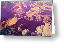 Purple Splendor Greeting Card