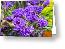 Purple Statice Flower Arrangement Greeting Card