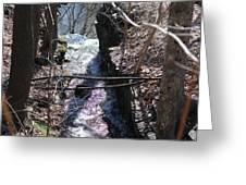 Purple Stream Greeting Card
