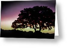Purple Sunset Green Flash And Oak Tree Silhouette Greeting Card