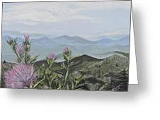 Purple Thistle Along The Blue Ridge Greeting Card