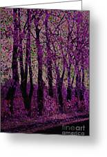 Purple Trees Greeting Card