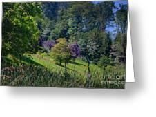 Purple Trees Greeting Card