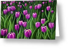 Purple Tulip Field Greeting Card