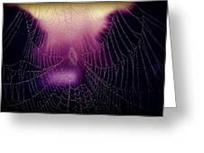 Purple Web Of Lies Greeting Card
