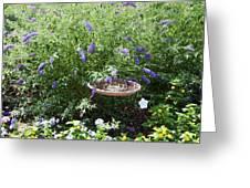 Purple Wild Flowers 1 Greeting Card