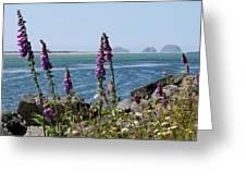 Purple Wildflowers At Netarts Bay Greeting Card