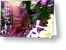 Purple Wings Greeting Card