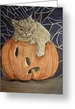 Purrfect Halloween Greeting Card