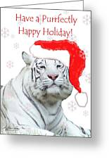 Purrfect Holiday Greeting Card