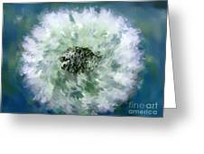 Pursuit Of Happiness Blue White Greeting Card