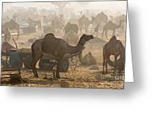 Pushkar Camel Fair - India Greeting Card