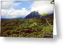 Puu Piei Trail Koolau Mountains Greeting Card