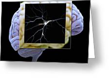 Pyramidal Neuron And Brain Greeting Card