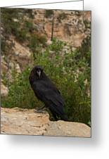 Qouth The Raven Nevermore Greeting Card