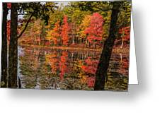Quabbin Reservoir Fall Foliage Greeting Card