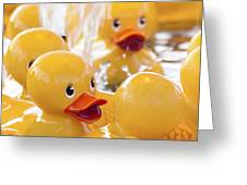 Quackers Greeting Card