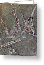 Quail Lookouts Greeting Card