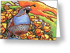 Quail Poppies Greeting Card by Nadi Spencer