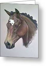 Quarter Horse Greeting Card by Janet Moss
