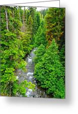 Quartz Creek Greeting Card