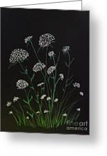 Queen Anns Lace Greeting Card